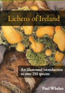Lichens of Ireland